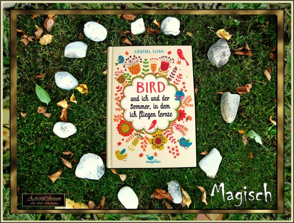 Bird und ich und der Sommer, in dem ich fliegen lernte - Crystal Chan - Buchmagie