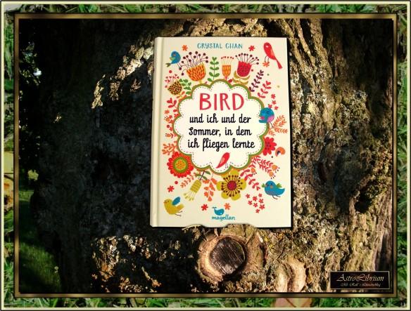 Bird und ich und der Sommer, in dem ich fliegen lernte - Crystal Chan