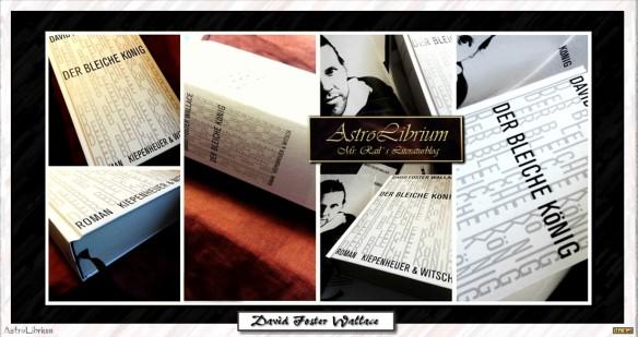 David Foster Wallace - Eine Anstiftung zum Lesen