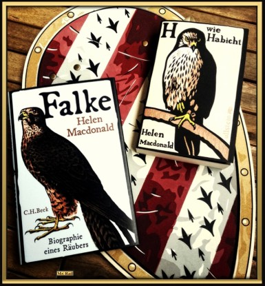 H wie Habicht und Falke