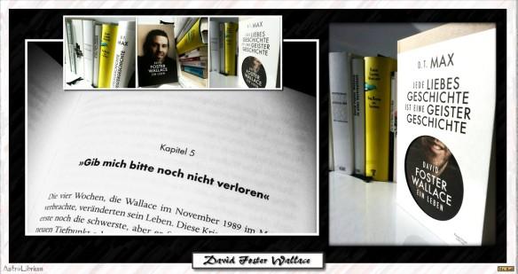 Jede Liebesgeschichte ist eine Geistergeschichte – David Foster Wallace – ein Leben