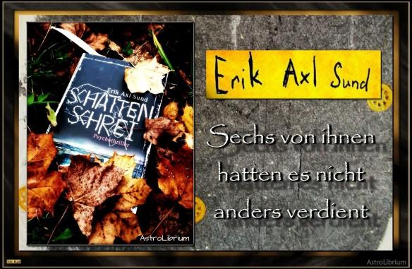 Schattenschrei von Erik Axl Sund - Victoria-Bergmann Trilogie - Das Finale