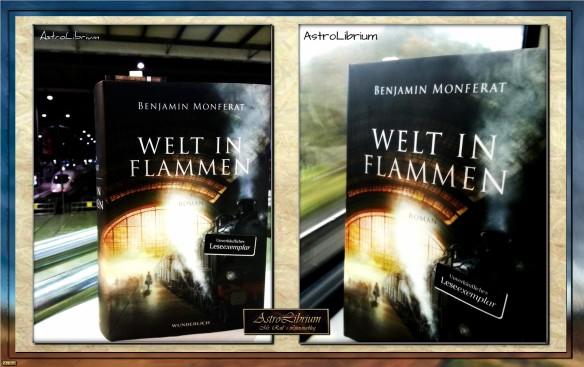Welt in Flammen von Benjamin Monferat