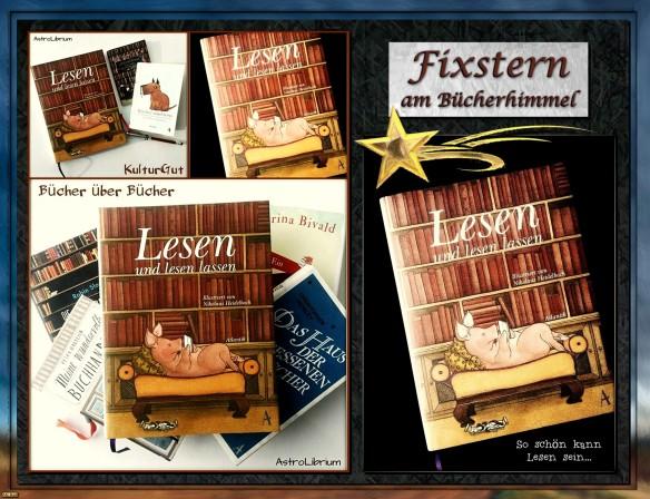 Lesen und lesen lassen - Illustriert von Nikolaus Heidelbach - Ein Fixstern am Bücherhimmel
