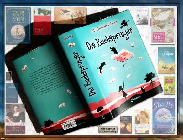 Die Buchspringer von Mechthild Gläser