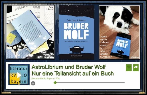Mit einem Klick zu Bruder Wolf - Ein Buch - Zwei Perspektiven