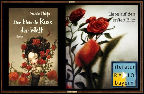 Der kleinste Kuss der Welt - Mathias Malzieu