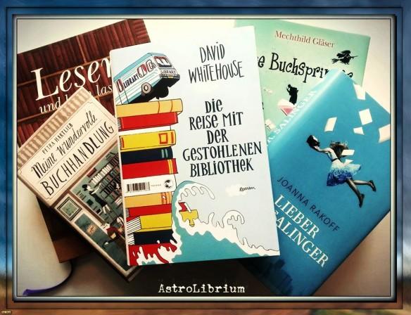 Die Reise mit der gestohlenen Bibliothek - David Whitehouse - Bücher über Bücher