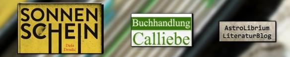 sonnenschein_dasa drndic_astrolibrium_hoffmann und campe_buchhandlung calliebe