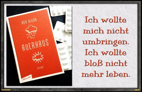 Auerhaus von Bov Bjerg - Der Roman einer Jugend