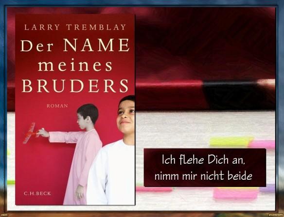 Der Name meines Bruders von Larry Tremblay