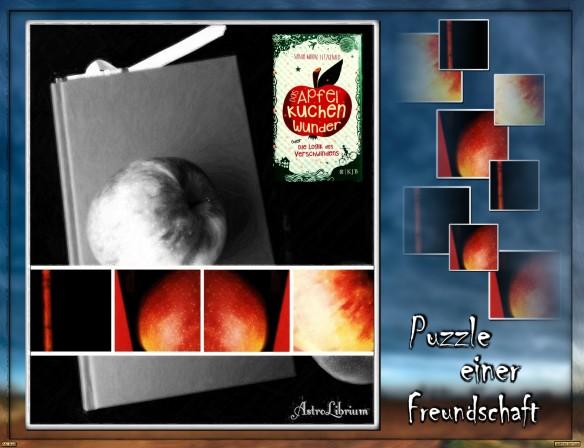 Das Apfelkuchenwunder von Sarah Moore Fitzgerald
