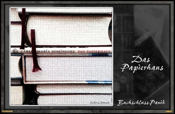 Das Papierhaus von Carlos Maria Dominguez