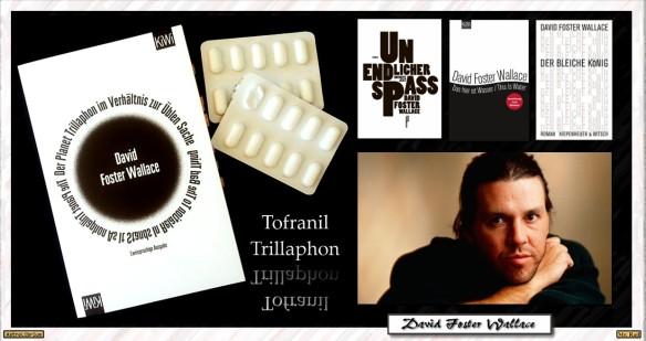 Der Planet Trillaphon im Verhältnis zur Üblen Sache - David Foster Wallace