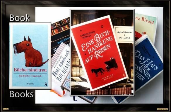 Mit einem Klick zur Kategorie Bücher über Bücher