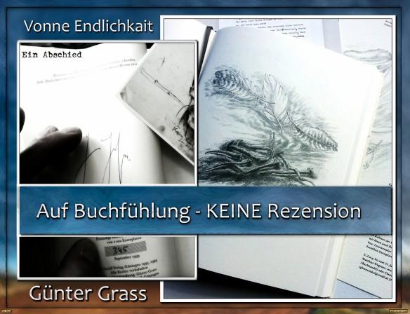 """Auf Buchfühlung mit """"Vonne Endlichkait"""" von Günter Grass"""
