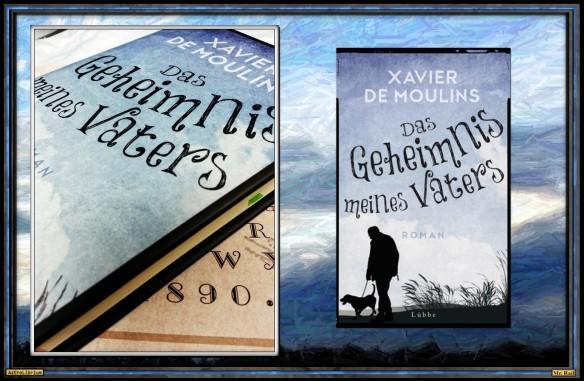 Das Geheimnis meinses Vaters - Xavier de Moulins
