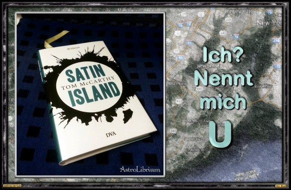 Satin Island von Tom McCarthy