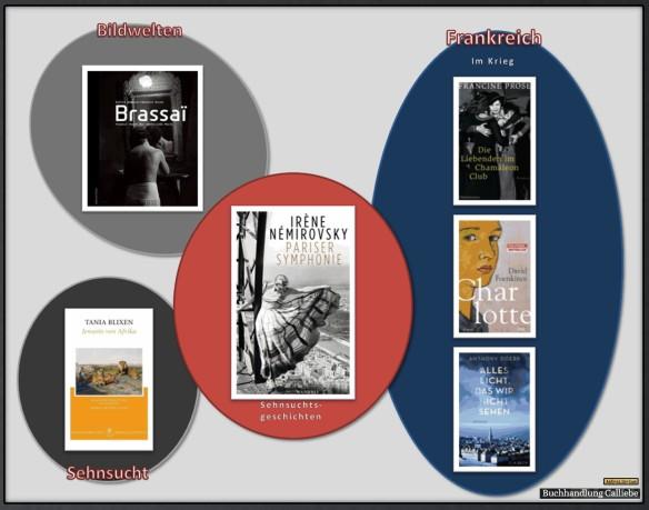 Pariser Symphonie von Irène Némirovsky - Die Bücherkette