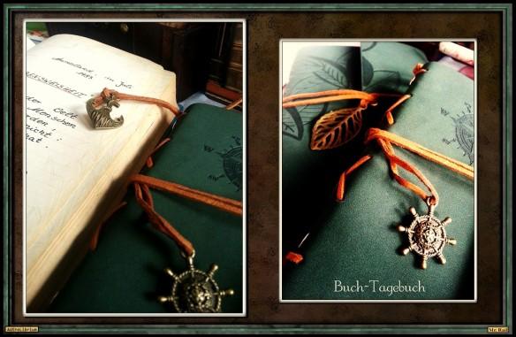 Tag des Tagebuchs in der kleinen literarschen Sternwarte