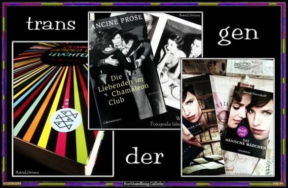 George von Alex Gino - Transgender-Literatur