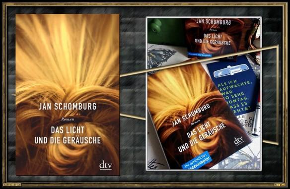 Das Licht und die Geräusche von Jan Schomburg