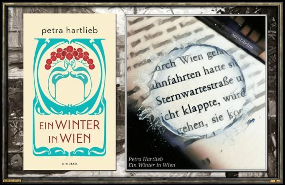 Ein Winter in Wien von Petra Hartlieb