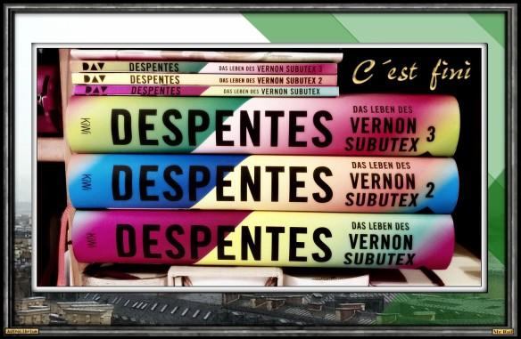 "Das Leben des Vernon Subutex 3"" von Virginie Despentes - AstroLibrium"