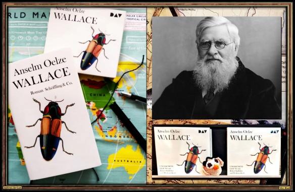 Wallace von Anselm Oelze - AstroLibrium