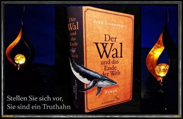 Der Wal und das Ende der Welt von John Ironmonger - AstroLibrium