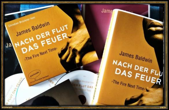 Nach der Flut das Feuer von James Baldwin - AstroLibrium