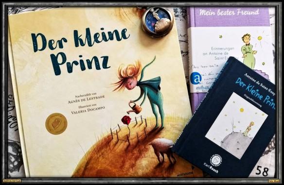 Der kleine Prinz von Agnès de Lestrade und Valeria Docampo - Astrolibrium