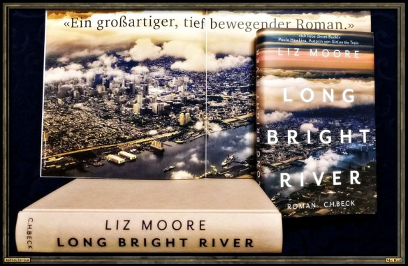 Long Bright River von Liz Moore - Astrolibrium