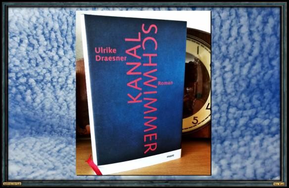 Kanalschwimmer von Ulrike Draesner - Astrolibrium