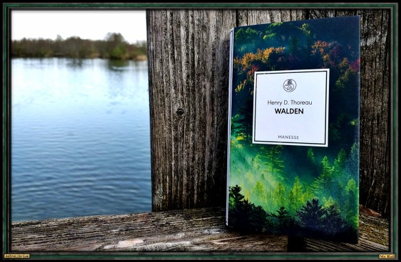 Walden von Henry D. Thoreau - Astrolibrium - Tiny books