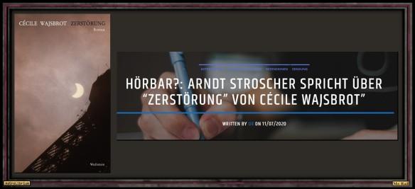 Zerstörung von Cécile Wajsbrot - Die Rezension fürs Ohr - Astrolibrium