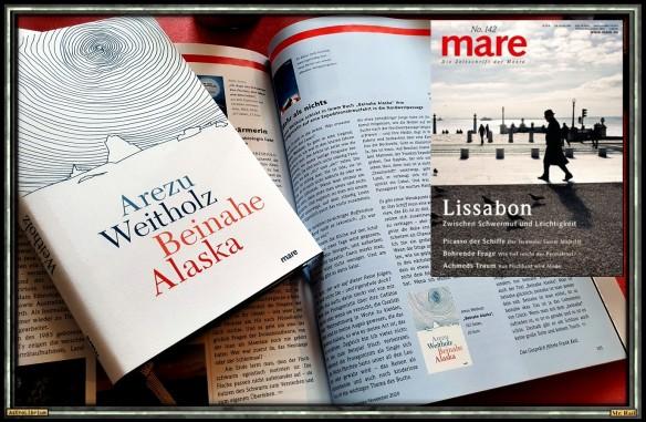 Beinahe Alaska von Arezu Weitholz - Astrolibrium