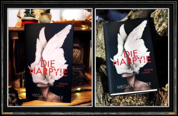 Die Harpyie von Megan Hunter - Astrolibrium