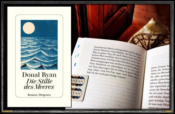 Die Stille des Meeres von Donal Ryan - Astrolibrium