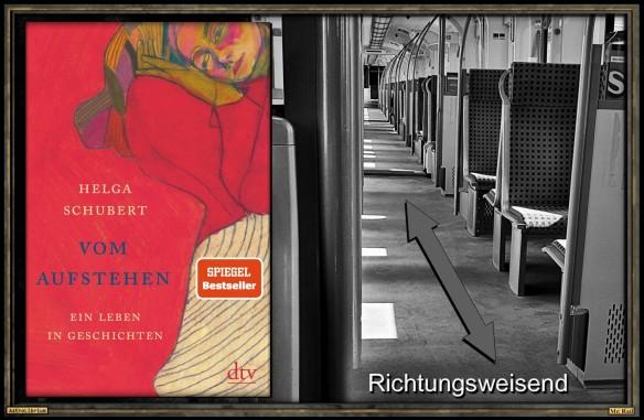 Vom Aufstehen - Ein Leben in Geschichten - Helga Schubert - Astrolibrium